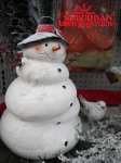 SnowmanWP