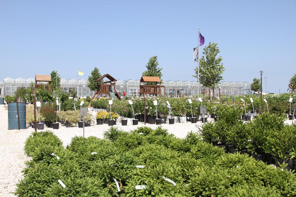 K 7 Amp Prairie Star Pkwy Suburban Lawn Amp Garden