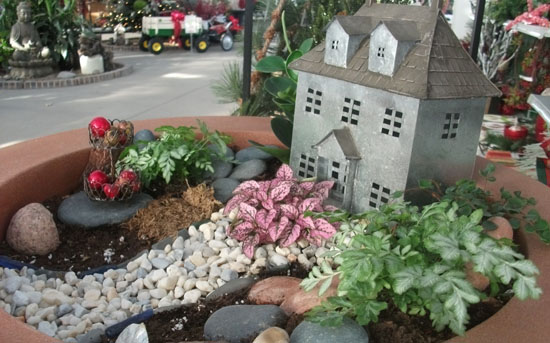 Fairy Gardens How To The Suburban Garden Dirt
