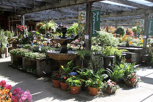 Annuals-&-Perennials-Photo