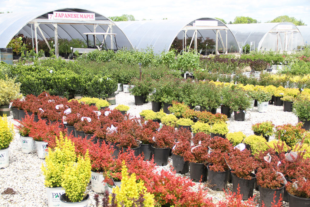 To Get A Flavor Of The Diffe Lawn And Garden Items In Our Vast Catalog Click Here