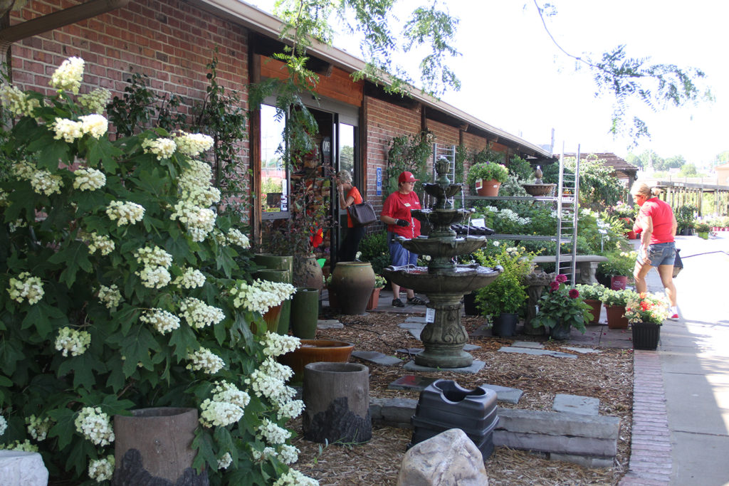 Specializing In New And Unique Garden Plants Accessories The Roe Is Always Bringing Fresh Roses Perennials Flowers From Our Farm